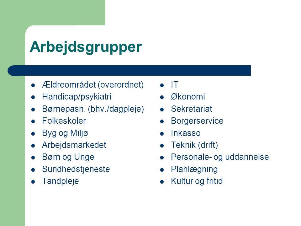 Arbejdsgrupper Ældreområdet (overordnet) Handicap/psykiatri Børnepasn.