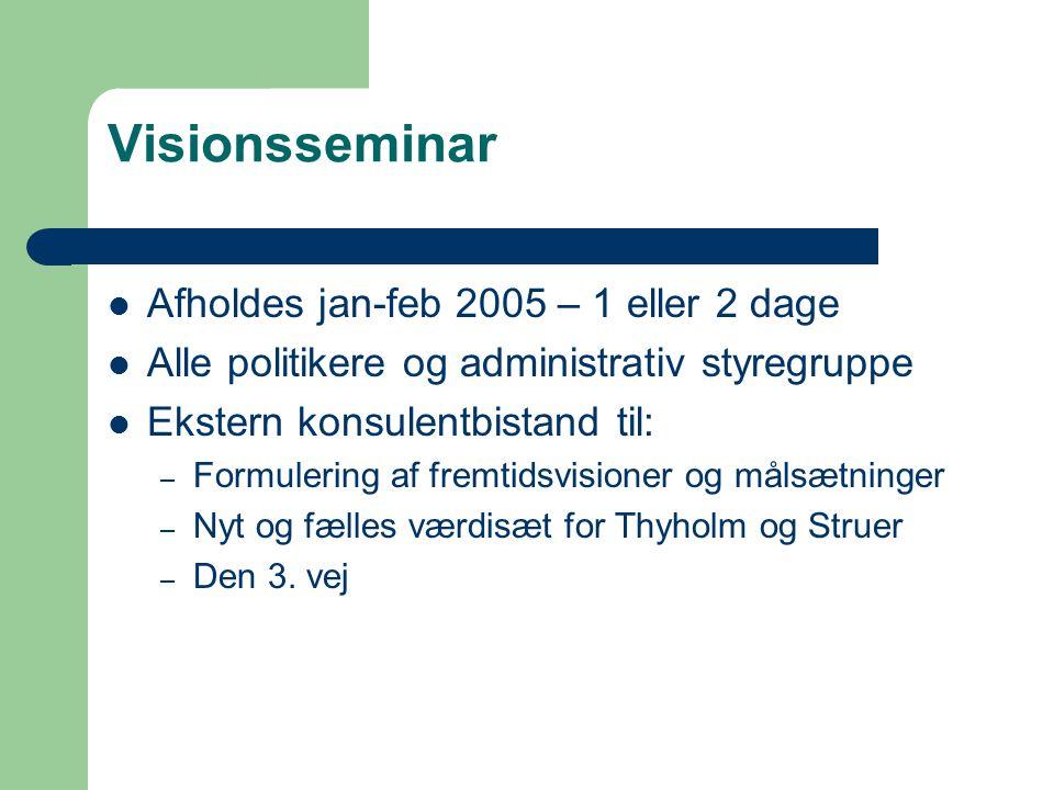 Visionsseminar Afholdes jan-feb 2005 – 1 eller 2 dage Alle politikere og administrativ styregruppe Ekstern konsulentbistand til: – Formulering af fremtidsvisioner og målsætninger – Nyt og fælles værdisæt for Thyholm og Struer – Den 3.