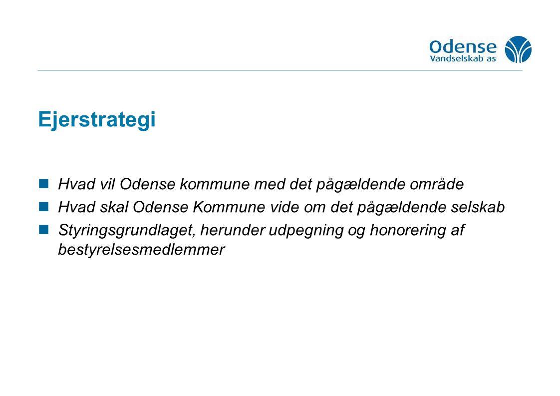 Ejerstrategi Hvad vil Odense kommune med det pågældende område Hvad skal Odense Kommune vide om det pågældende selskab Styringsgrundlaget, herunder udpegning og honorering af bestyrelsesmedlemmer