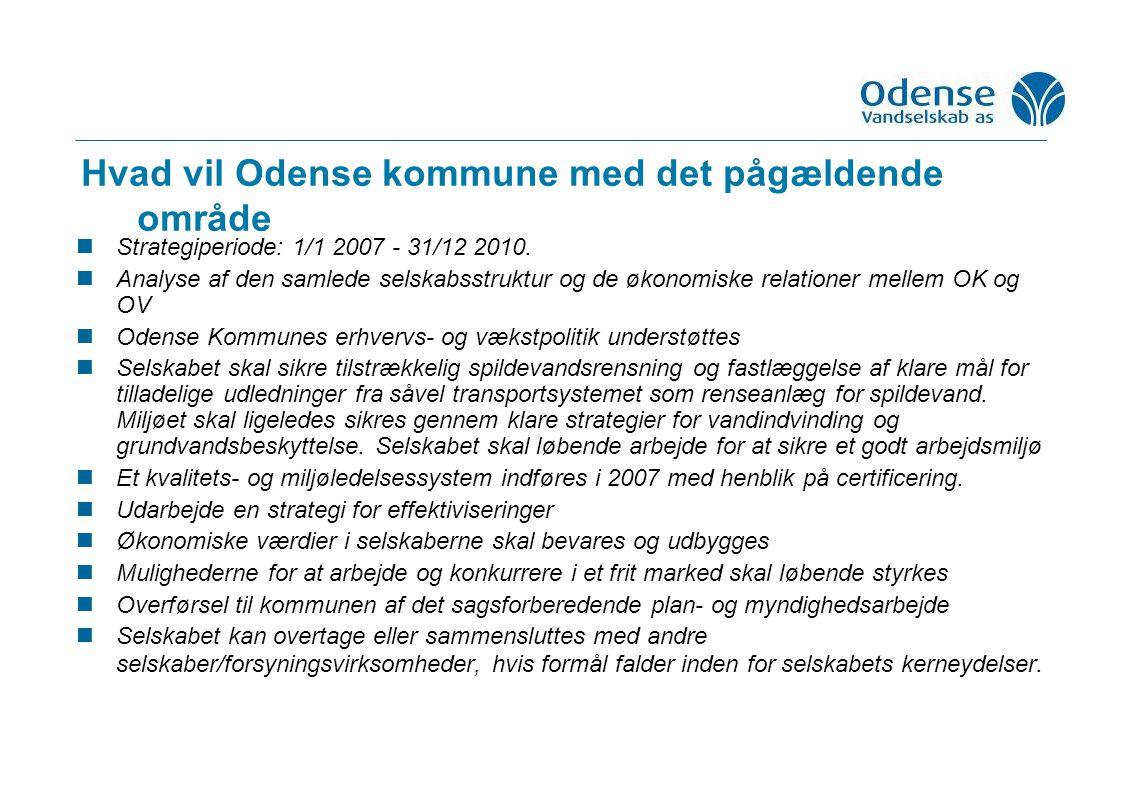 Hvad vil Odense kommune med det pågældende område Strategiperiode: 1/1 2007 - 31/12 2010.