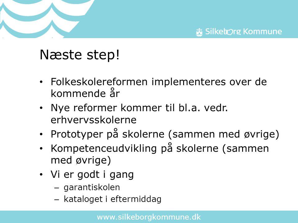 www.silkeborgkommune.dk Næste step.