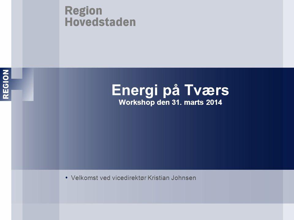 Energi på Tværs Workshop den 31. marts 2014 Velkomst ved vicedirektør Kristian Johnsen