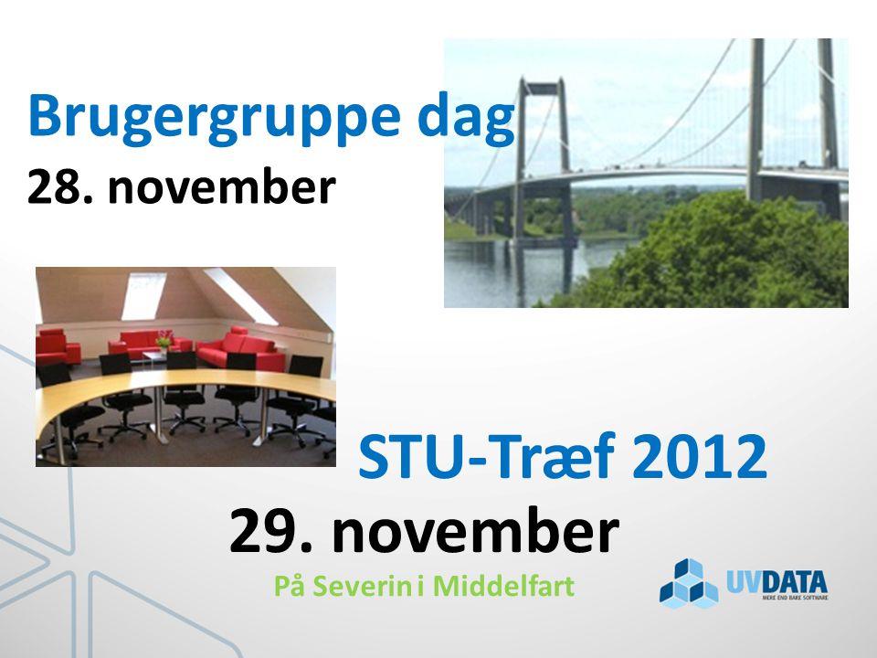 STU-Træf 2012 29. november På Severin i Middelfart Brugergruppe dag 28. november