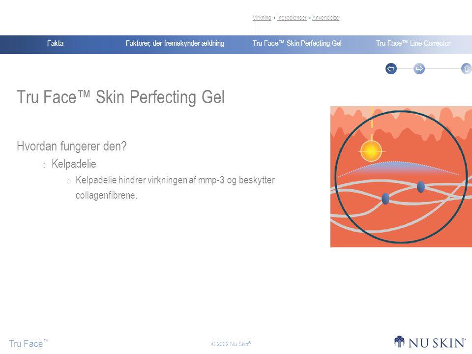 Faktorer, der fremskynder ældningFaktaTru Face™ Skin Perfecting GelTru Face™ Line Corrector Tru Face ™    © 2002 Nu Skin ® Tru Face™ Skin Perfecting Gel Hvordan fungerer den.