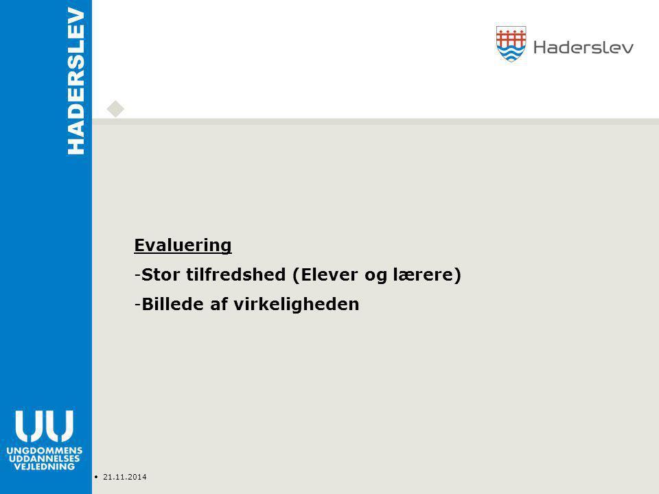 Type Navn 21.11.2014 HADERSLEV Evaluering -Stor tilfredshed (Elever og lærere) -Billede af virkeligheden