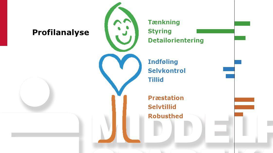 Profilanalyse Tænkning Styring Detailorientering Indføling Selvkontrol Tillid Præstation Selvtillid Robusthed