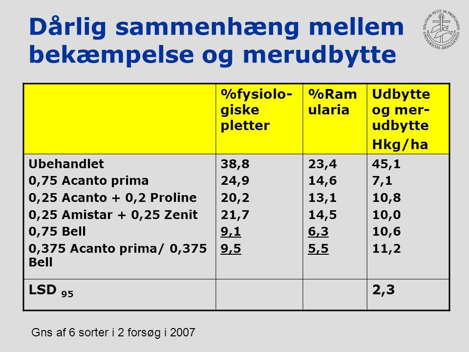 Dårlig sammenhæng mellem bekæmpelse og merudbytte %fysiolo- giske pletter %Ram ularia Udbytte og mer- udbytte Hkg/ha Ubehandlet 0,75 Acanto prima 0,25 Acanto + 0,2 Proline 0,25 Amistar + 0,25 Zenit 0,75 Bell 0,375 Acanto prima/ 0,375 Bell 38,8 24,9 20,2 21,7 9,1 9,5 23,4 14,6 13,1 14,5 6,3 5,5 45,1 7,1 10,8 10,0 10,6 11,2 LSD 95 2,3 Gns af 6 sorter i 2 forsøg i 2007