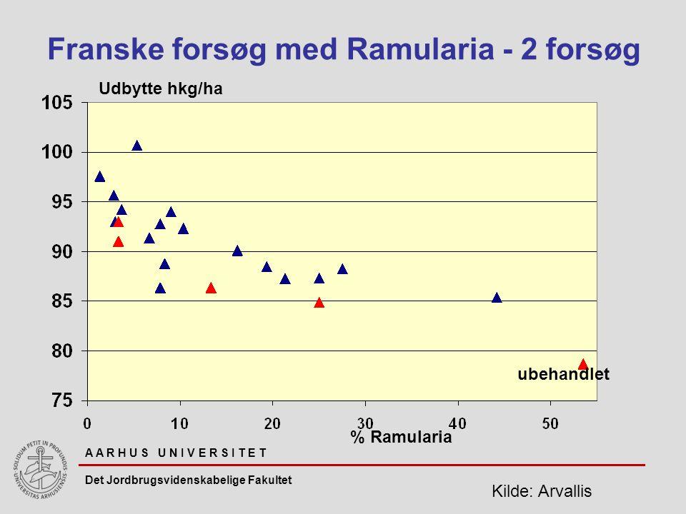 A A R H U S U N I V E R S I T E T Det Jordbrugsvidenskabelige Fakultet Udbytte hkg/ha Franske forsøg med Ramularia - 2 forsøg % Ramularia ubehandlet Kilde: Arvallis