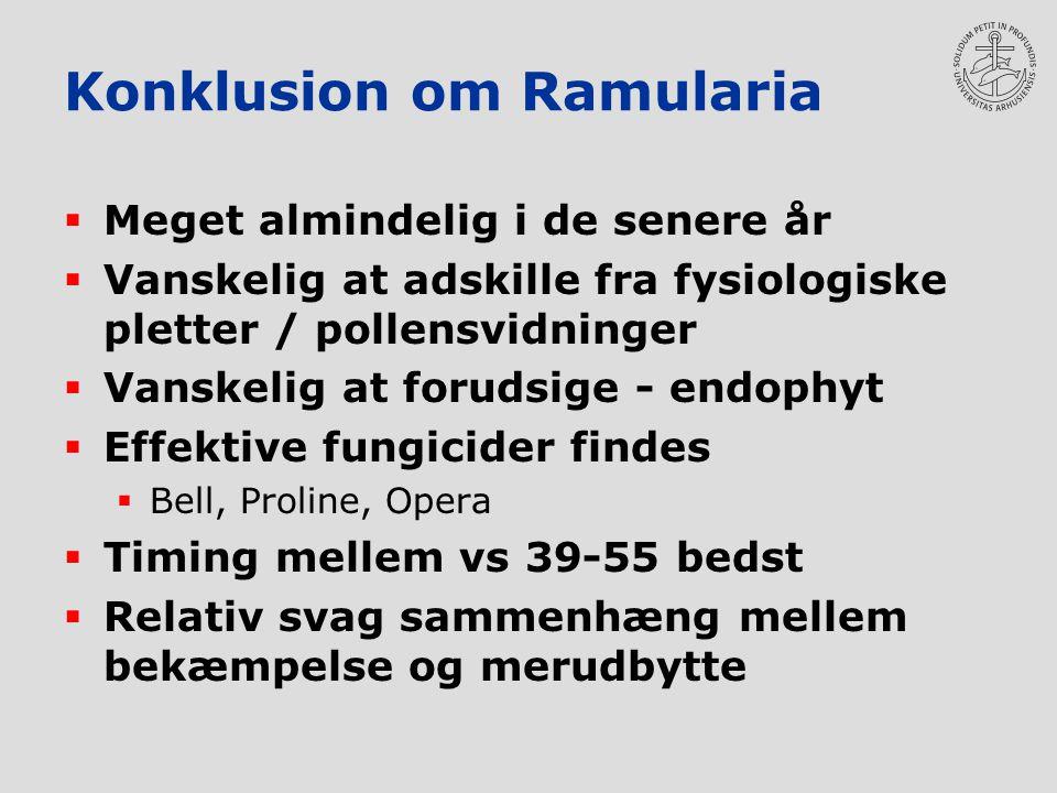 Konklusion om Ramularia  Meget almindelig i de senere år  Vanskelig at adskille fra fysiologiske pletter / pollensvidninger  Vanskelig at forudsige - endophyt  Effektive fungicider findes  Bell, Proline, Opera  Timing mellem vs 39-55 bedst  Relativ svag sammenhæng mellem bekæmpelse og merudbytte