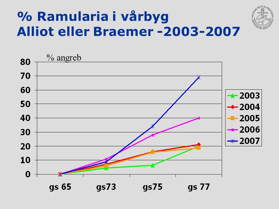 % Ramularia i vårbyg Alliot eller Braemer -2003-2007 % angreb