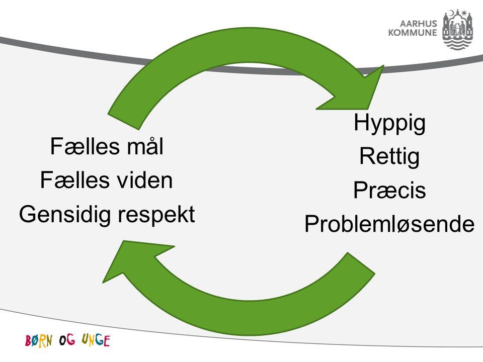 Hyppig Rettig Præcis Problemløsende Fælles mål Fælles viden Gensidig respekt