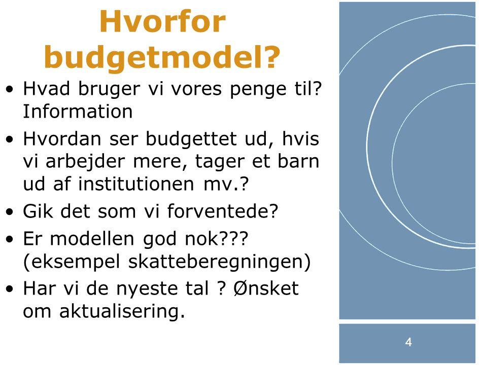 4 Hvorfor budgetmodel. Hvad bruger vi vores penge til.