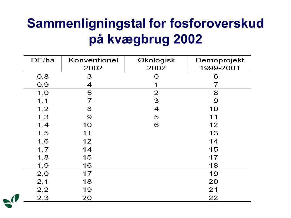 Sammenligningstal for fosforoverskud på kvægbrug 2002