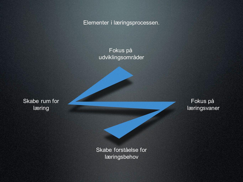 Hvis man skal sammenfatte det nogle af de væsentligste elementer i den organisatoriske læreproces kan de illustreres som i figuren.
