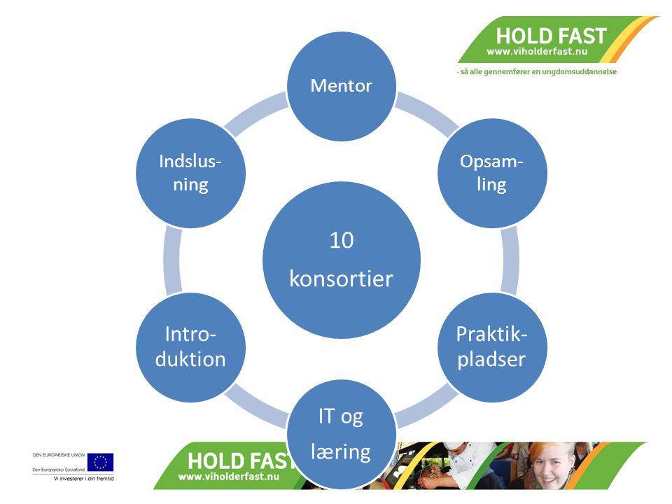 10 konsortier Mentor Opsam- ling Praktik- pladser IT og læring Intro- duktion Indslus- ning