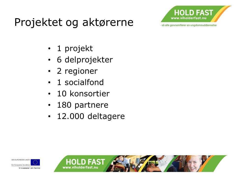 Projektet og aktørerne 1 projekt 6 delprojekter 2 regioner 1 socialfond 10 konsortier 180 partnere 12.000 deltagere