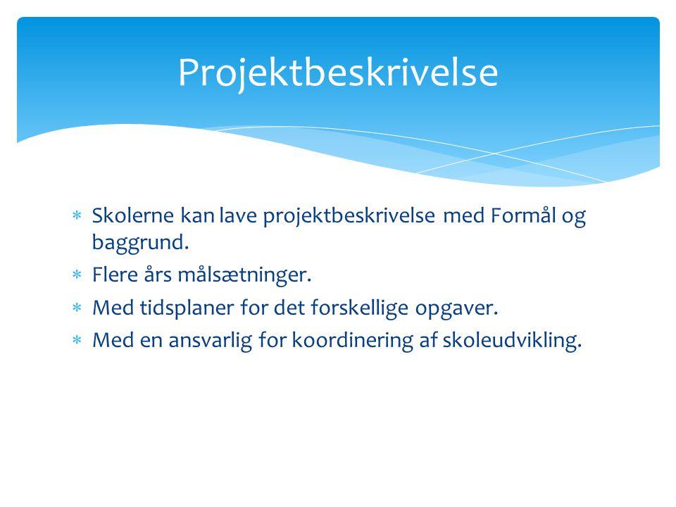  Skolerne kan lave projektbeskrivelse med Formål og baggrund.