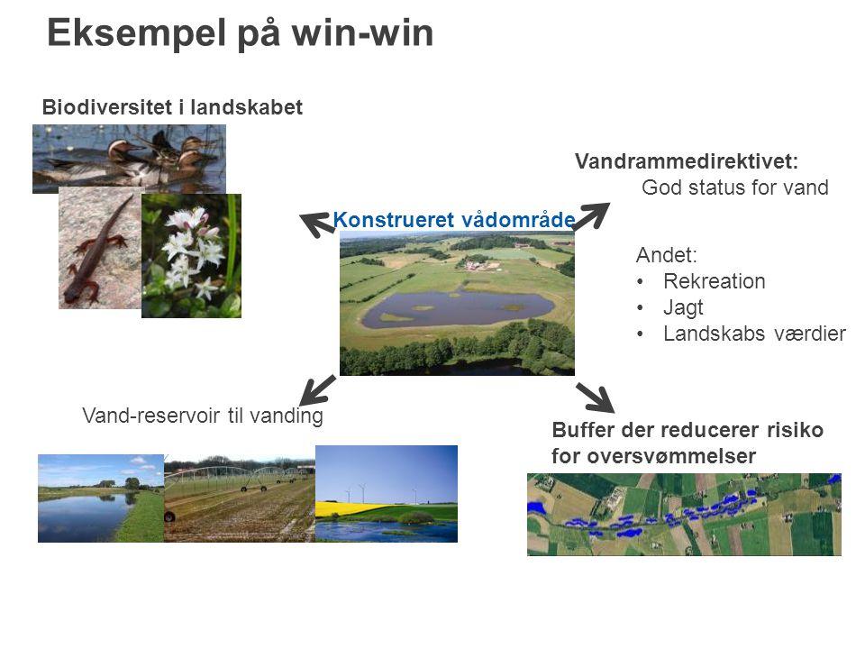Konstrueret vådområde Buffer der reducerer risiko for oversvømmelser Vand-reservoir til vanding Biodiversitet i landskabet Vandrammedirektivet: God status for vand Andet: Rekreation Jagt Landskabs værdier Eksempel på win-win