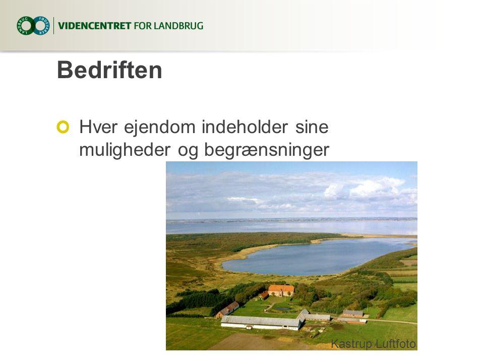 Bedriften Hver ejendom indeholder sine muligheder og begrænsninger Kastrup Luftfoto