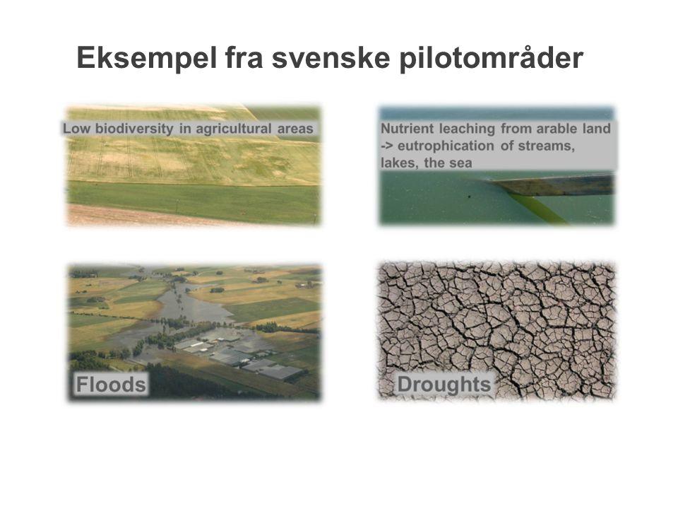 Eksempel fra svenske pilotområder