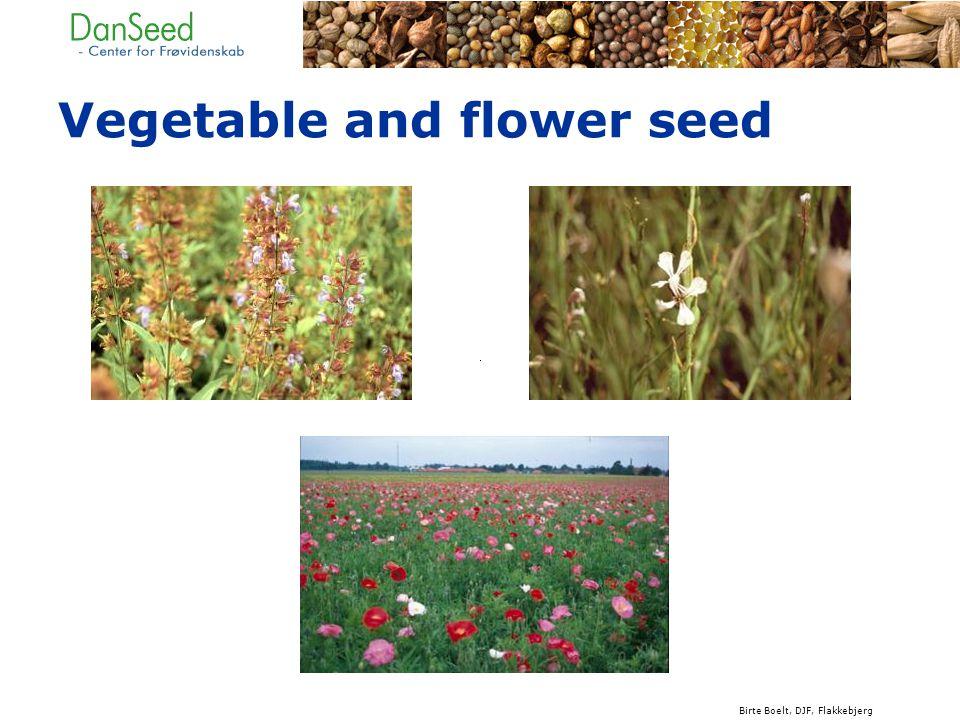 Vegetable and flower seed Birte Boelt, DJF, Flakkebjerg
