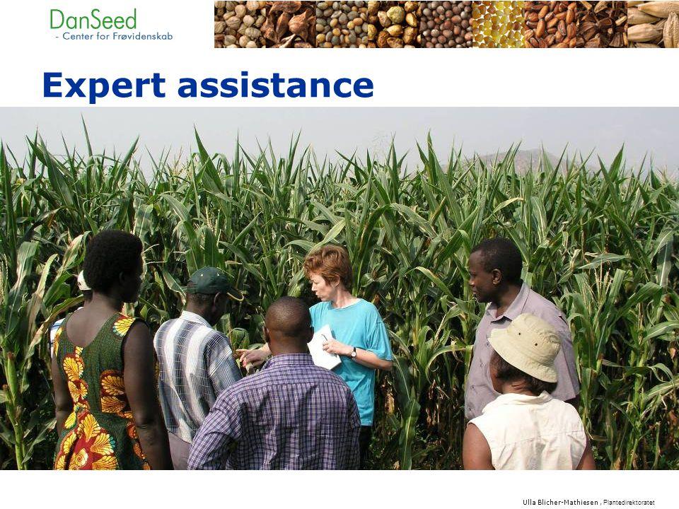 Expert assistance Ulla Blicher-Mathiesen, Plantedirektoratet