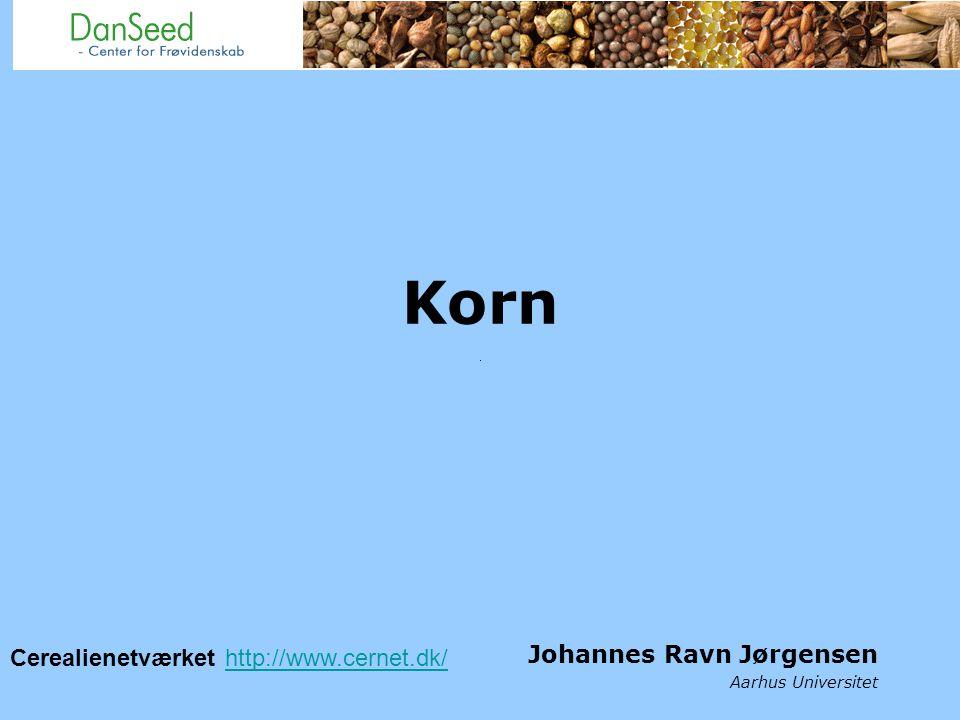 Korn Johannes Ravn Jørgensen Aarhus Universitet Cerealienetværket http://www.cernet.dk/http://www.cernet.dk/