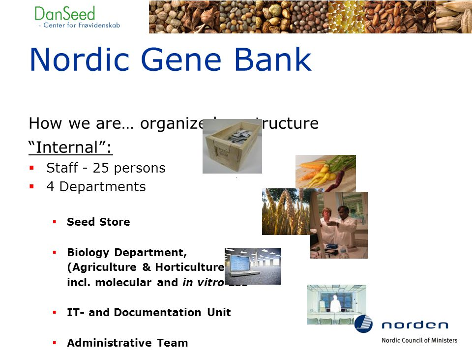 Nordic Gene Bank How we are… organized - structure Internal :  Staff - 25 persons  4 Departments  Seed Store  Biology Department, (Agriculture & Horticulture) incl.