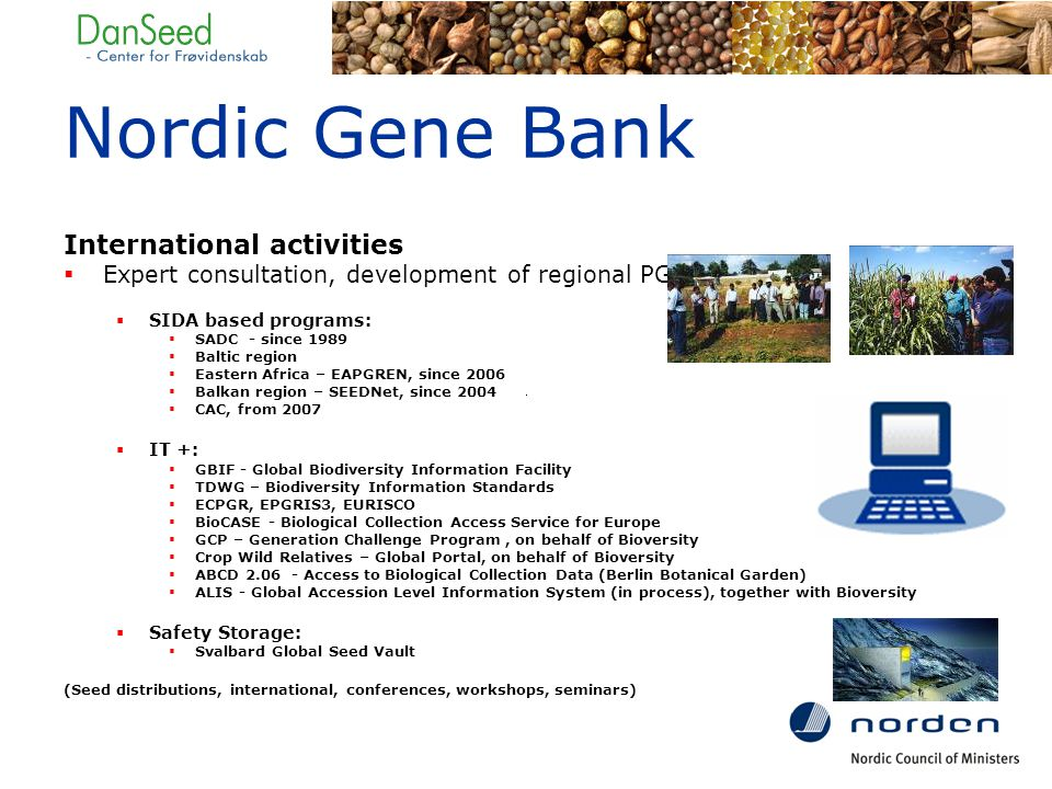 Nordic Gene Bank International activities  Expert consultation, development of regional PGR programs  SIDA based programs:  SADC - since 1989  Baltic region  Eastern Africa – EAPGREN, since 2006  Balkan region – SEEDNet, since 2004  CAC, from 2007  IT +:  GBIF - Global Biodiversity Information Facility  TDWG – Biodiversity Information Standards  ECPGR, EPGRIS3, EURISCO  BioCASE - Biological Collection Access Service for Europe  GCP – Generation Challenge Program, on behalf of Bioversity  Crop Wild Relatives – Global Portal, on behalf of Bioversity  ABCD 2.06 - Access to Biological Collection Data (Berlin Botanical Garden)  ALIS - Global Accession Level Information System (in process), together with Bioversity  Safety Storage:  Svalbard Global Seed Vault (Seed distributions, international, conferences, workshops, seminars)