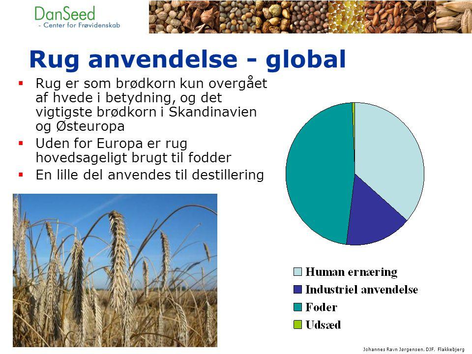 Rug anvendelse - global  Rug er som brødkorn kun overgået af hvede i betydning, og det vigtigste brødkorn i Skandinavien og Østeuropa  Uden for Europa er rug hovedsageligt brugt til fodder  En lille del anvendes til destillering Johannes Ravn Jørgensen, DJF, Flakkebjerg
