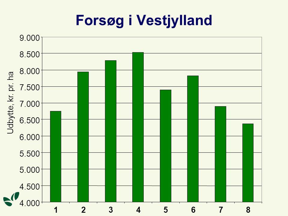 Forsøg i Vestjylland 4.000 4.500 5.000 5.500 6.000 6.500 7.000 7.500 8.000 8.500 9.000 12345678 Udbytte, kr.