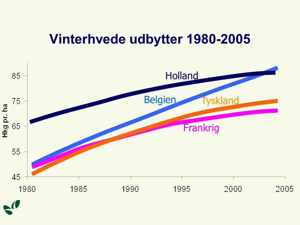 Vinterhvede udbytter 1980-2005 Belgien Frankrig Tyskland Holland