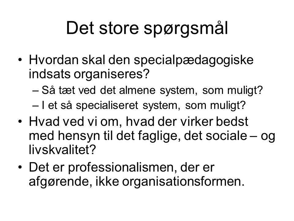 Det store spørgsmål Hvordan skal den specialpædagogiske indsats organiseres.
