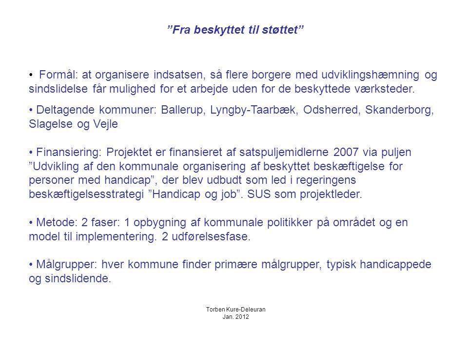 Fra beskyttet til støttet Formål: at organisere indsatsen, så flere borgere med udviklingshæmning og sindslidelse får mulighed for et arbejde uden for de beskyttede værksteder.