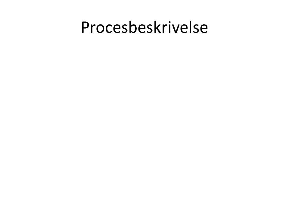 Procesbeskrivelse