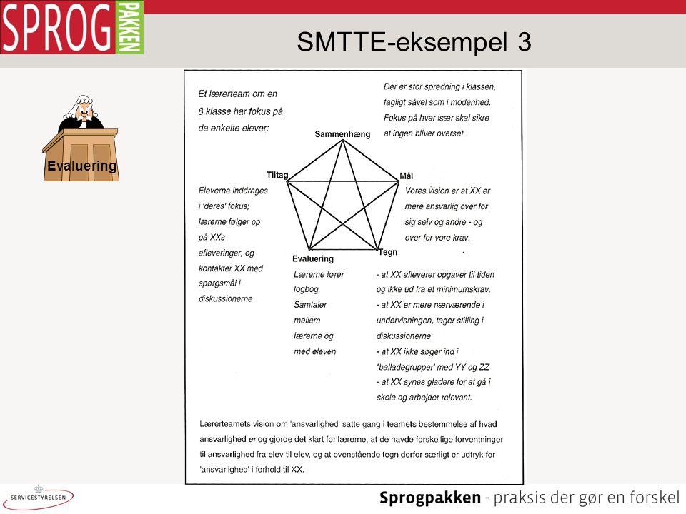 Evaluering SMTTE-eksempel 3