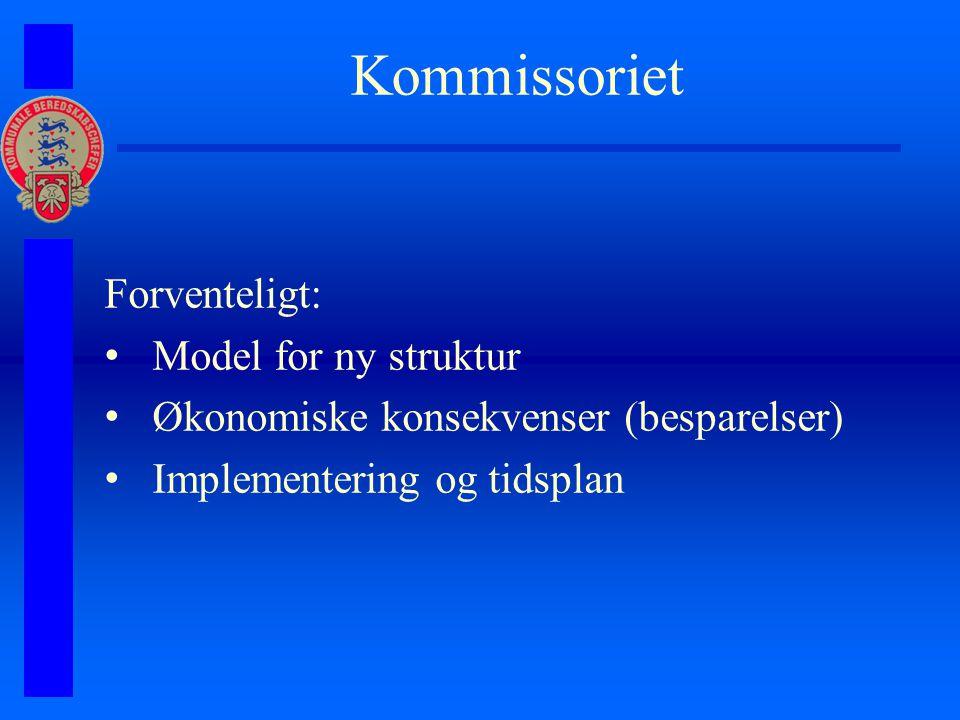Kommissoriet Forventeligt: Model for ny struktur Økonomiske konsekvenser (besparelser) Implementering og tidsplan
