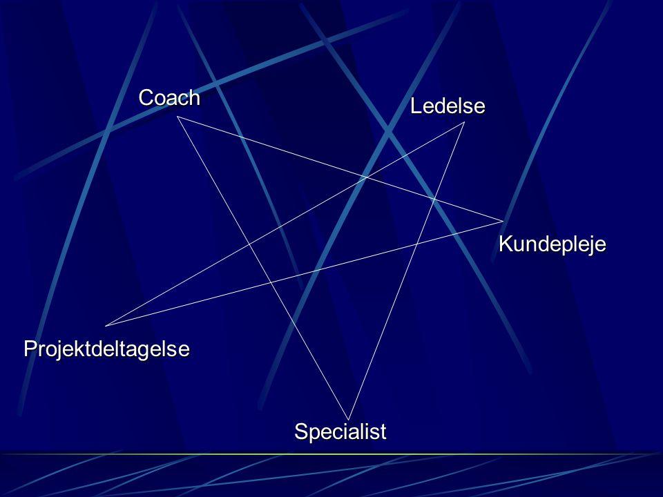 Ledelse Kundepleje Specialist Projektdeltagelse Coach