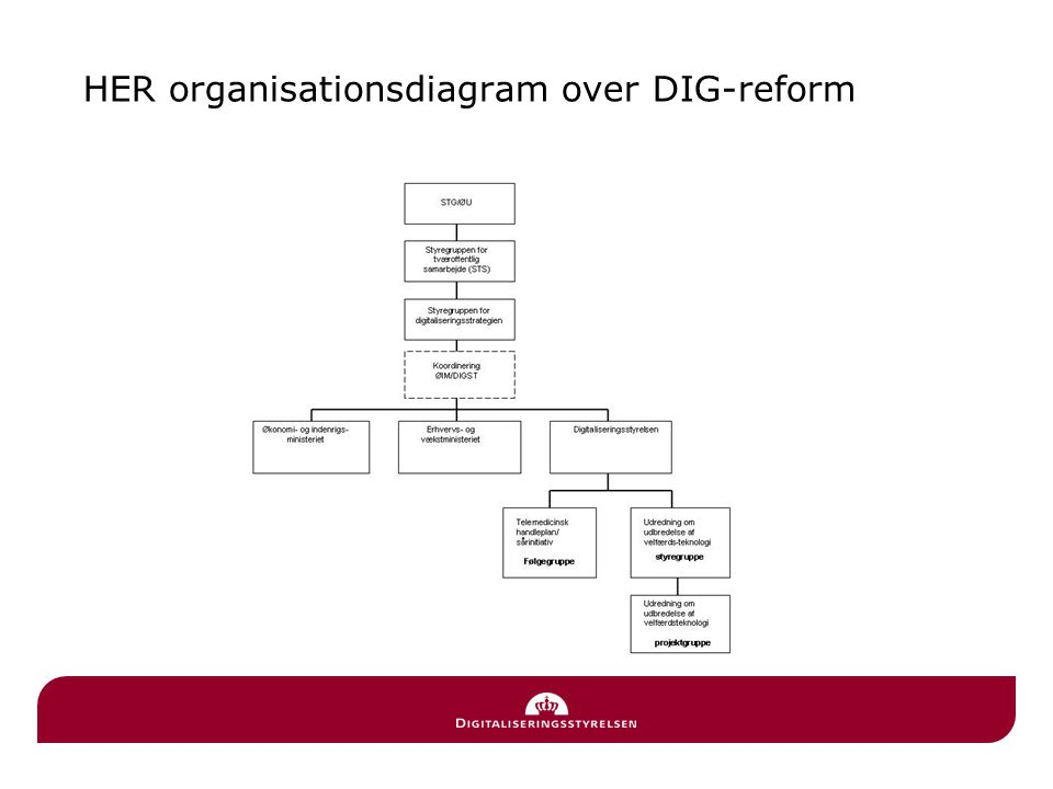 HER organisationsdiagram over DIG-reform