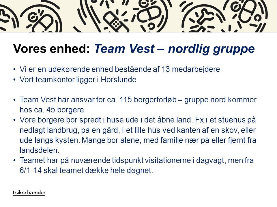 Vores enhed: Team Vest – nordlig gruppe Vi er en udekørende enhed bestående af 13 medarbejdere Vort teamkontor ligger i Horslunde Team Vest har ansvar for ca.