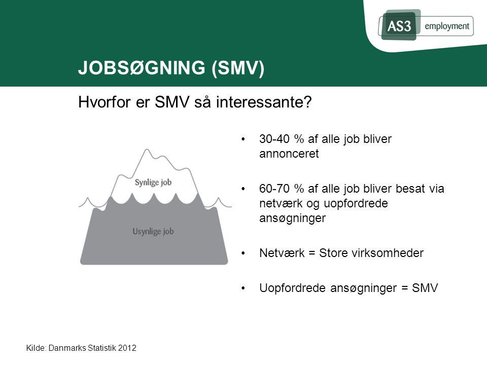 JOBSØGNING (SMV) Hvorfor er SMV så interessante.