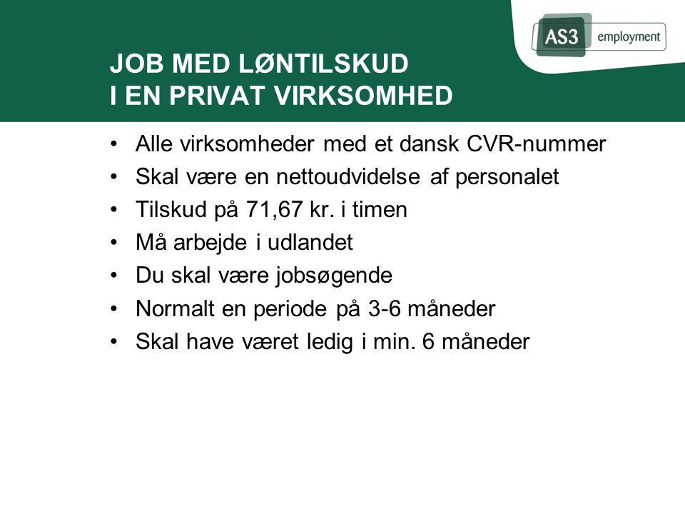 JOB MED LØNTILSKUD I EN PRIVAT VIRKSOMHED Alle virksomheder med et dansk CVR-nummer Skal være en nettoudvidelse af personalet Tilskud på 71,67 kr.