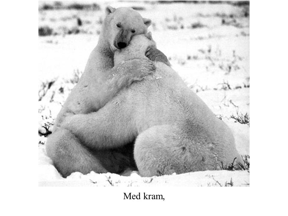 Med kram,