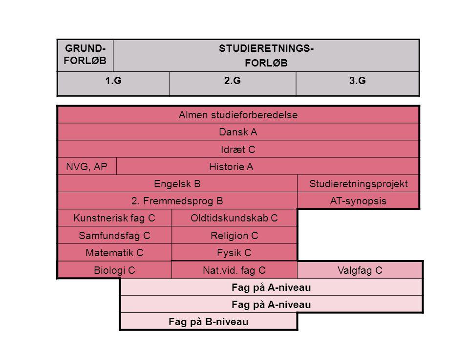 Almen studieforberedelse Dansk A Idræt C NVG, AP Historie A Engelsk BStudieretningsprojekt 2.