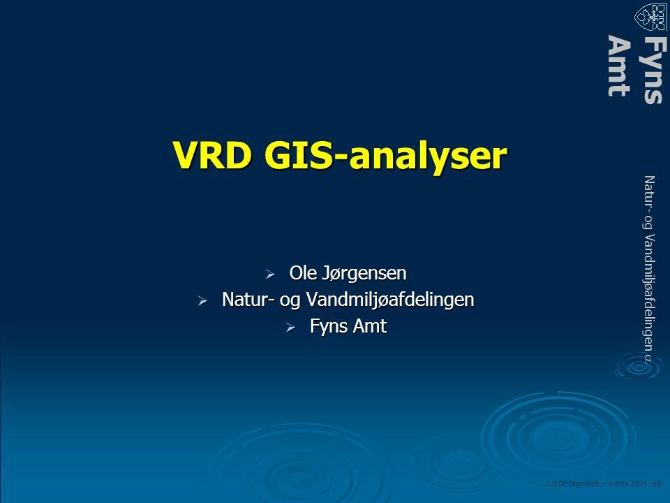 FynsAmt Natur- og Vandmiljøafdelingen a LOOP fagmøde – marts 2004 - olj VRD GIS-analyser  Ole Jørgensen  Natur- og Vandmiljøafdelingen  Fyns Amt