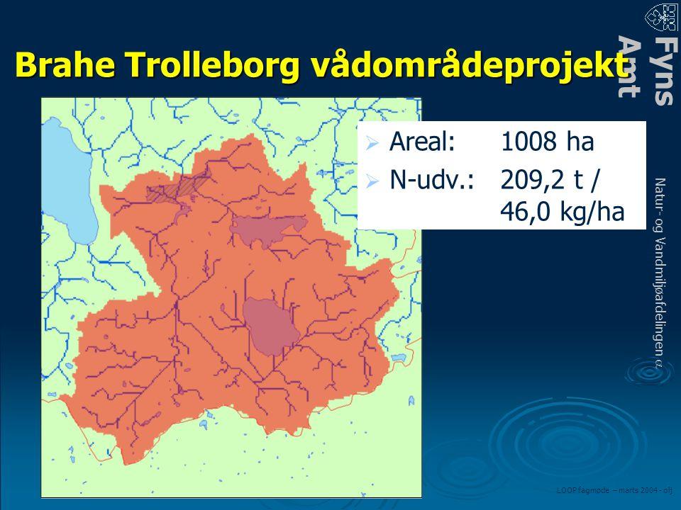 FynsAmt Natur- og Vandmiljøafdelingen a LOOP fagmøde – marts 2004 - olj Brahe Trolleborg vådområdeprojekt   Areal:1008 ha   N-udv.:209,2 t / 46,0 kg/ha