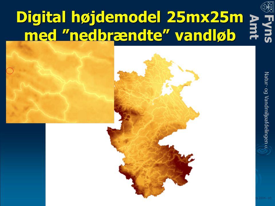 FynsAmt Natur- og Vandmiljøafdelingen a LOOP fagmøde – marts 2004 - olj Digital højdemodel 25mx25m med nedbrændte vandløb