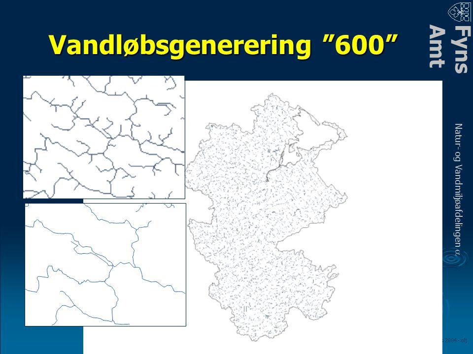 FynsAmt Natur- og Vandmiljøafdelingen a LOOP fagmøde – marts 2004 - olj Vandløbsgenerering 600