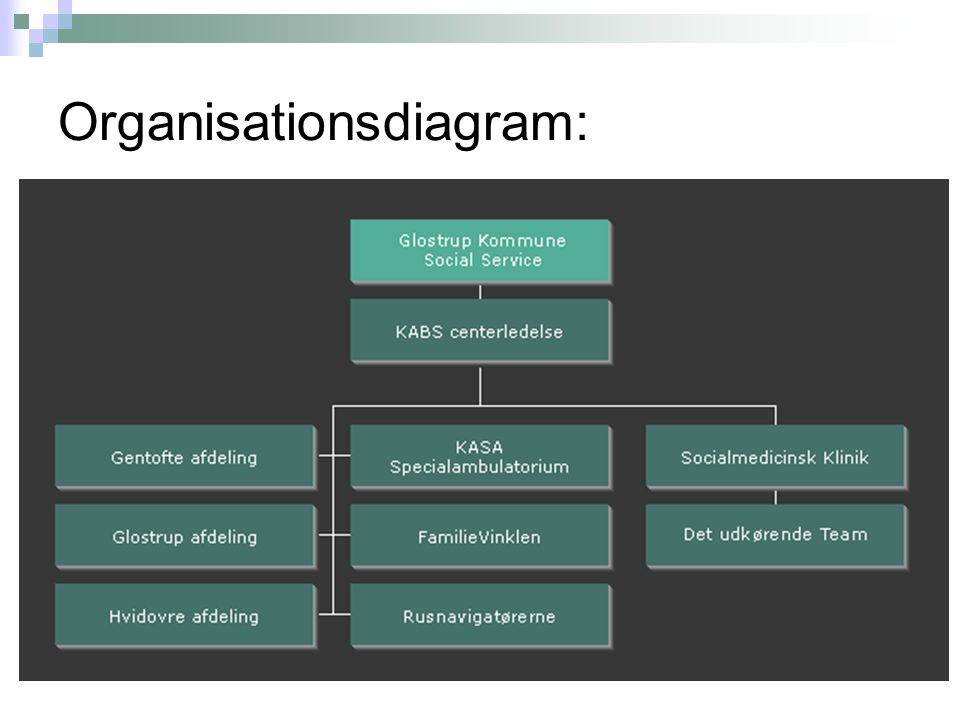 Organisationsdiagram: