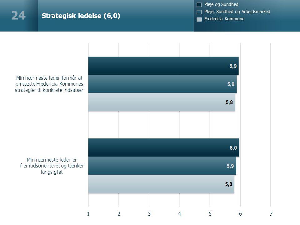 Strategisk ledelse (6,0) 24